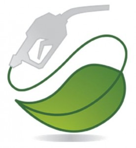 iij Selected Innovation Briefing: Biofuels