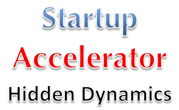 Why do startup accelerators get into trouble?